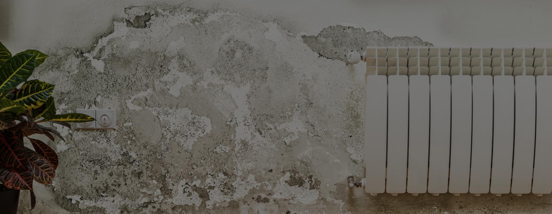 Damp Proofing Wall Doncaster